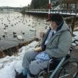 白鳥の大池