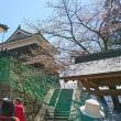 上田城千本桜まつり🌸