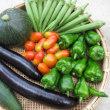 夏野菜 収穫続く