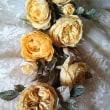 黄色のロロ薔薇と生徒さんの宿題の薔薇たち
