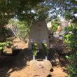 多磨霊園 –   東郷平八郎と児玉源太郎を参拝する