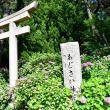 住吉神社 あじさい神苑 2018