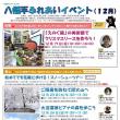 【12月7日更新】12月開催 八幡平ふれあいイベントのご案内