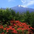 富士山 1500m  高原のオアシス... 土石流によって撮影場が (*'ω'*)