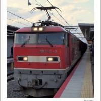 JR淡路駅 EF510-5が通過