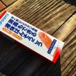横須賀ヴェルニー公園でトンビに襲われるの巻