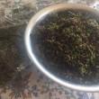 紫蘇の実と昆布の佃煮