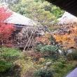 秋の京都を和服で歩こう