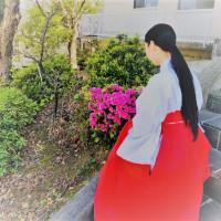 宮司講演★日本の神々・神職と巫女