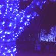 青の洞窟・渋谷・・2