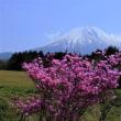 富士山 富士宮方面での旬彩追い... 写友Aさんと ( ^)o(^ )