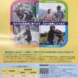 申し込み期間は5月1日〜6月22日です!→ 世田谷区「区民交通傷害保険」(自転車賠償責任プラン)