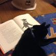 ストーブと猫と絵本