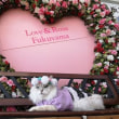 Love&Rose Fukuyama