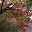 長安寺(箱根)の紅葉