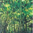 あの極悪雑草もアートに?。資生堂ギャラリーで 『Moving Plants 渡邊耕一展』 を観ました。