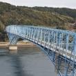 九州を旅する   天草イルカウオッチング
