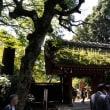 深大寺へ 1