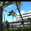 ハワイのカゼ  1