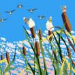 ガマの穂と渡り鳥