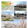 茨城-260 古河公方公園① (古河総合公園)
