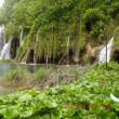 旧ユーゴスラビア4カ国の旅<プリトヴィッツェ湖群国立公園散策3>