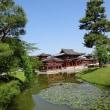 【京都】 宇治 新緑の平等院 (2017年5月)