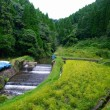 比志島の滝