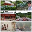西国三十三ヶ所参り第二十三番札所『勝尾寺』に行って来ました。