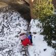 雪が積もりました
