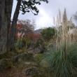 写真集と箱根