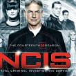 NCIS ネイビー犯罪捜査班 一挙放送もそろそろ終わり、次への伏せ線は貼られ始める