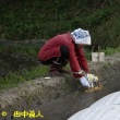 榛原萩原・小鹿野の水口マツリ