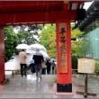 京都の旅二日目・・・平等院と醍醐寺