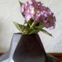 花、花、花。