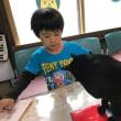 黒猫ジジィ 頑張れ1年生!