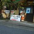 西丹沢大野山ハイク