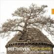 L.v.Beethoven後期弦楽四重奏曲集 モザイク四重奏団