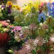 6月の花束