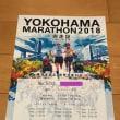 横浜マラソン2018~軌跡