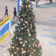 上から撮ったクリスマスツリー