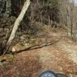道志村の林道偵察2018春