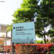 早稲田・慶応・難関大に合格:無料体験授業をスカイプで実施中