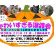 9月30日猫譲渡会、石神井公園にて