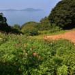 能古島アイランドパークからp9ラスト(D810,Nikon28-300mm)