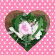 バレンタインのお花…