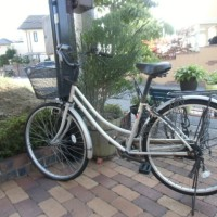 お願い💛自転車を買って‼ 2人の家族会議…