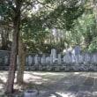 新政府軍の墓