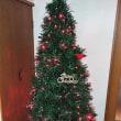 早めに出したクリスマスツリー