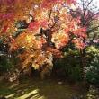 日本語の現象学